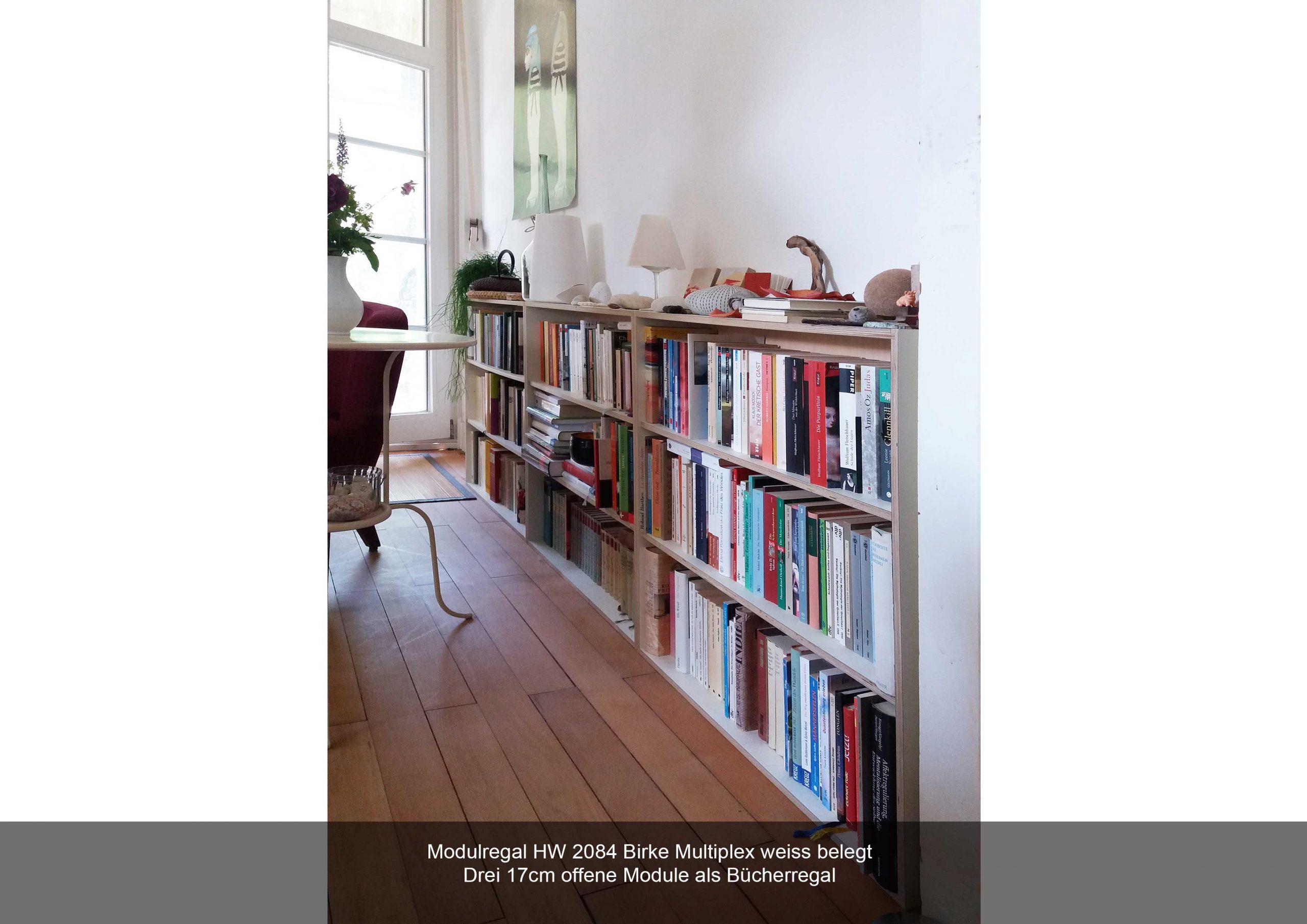 Regalmodule Multiplex Birke geölt Bücherregal offen HW 2084